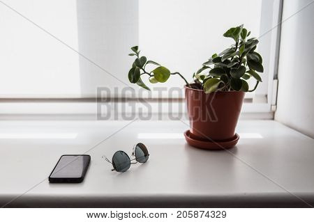 Minimalist stillife: Glasses, smartphone and flower. Shallow depth of field