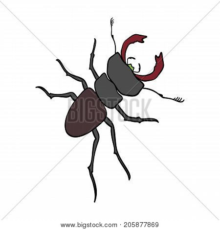 Beetle, arthropodous insect. A beetle with claws single icon in cartoon style vector symbol stock isometric illustration .