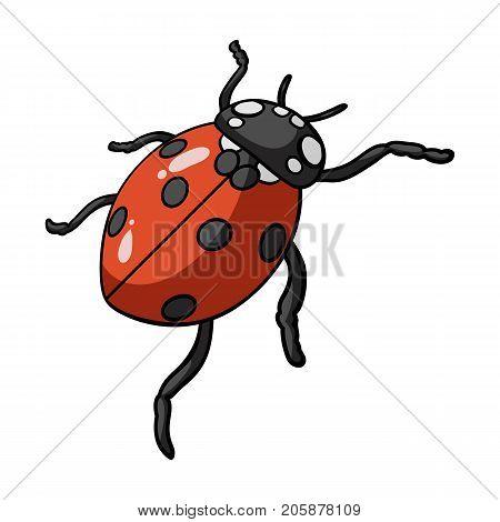 Ladybug is an arthropod.The insect beetle, ladybug single icon in cartoon style vector symbol stock isometric illustration .