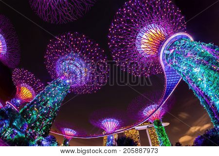 SINGAPORE - SEPTEMBER 8 2017: The Supertree Grove comes alive at Gardens by the Bay in Singapore. The nightly dazzling myriad of light and laser displays illuminate the sky.
