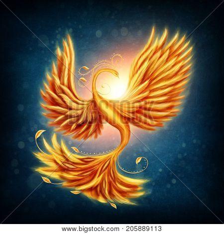 Magic firebird on a blue background