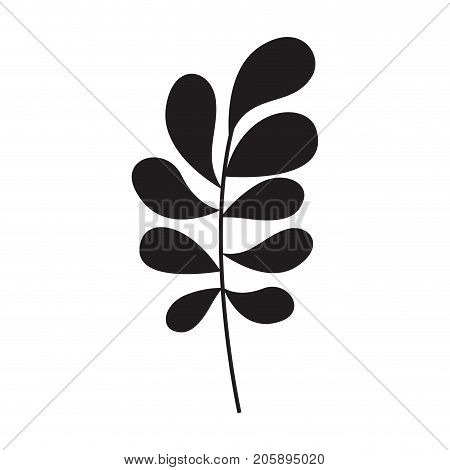 ramification with rounded leaves on monochrome silhouette vector illustration
