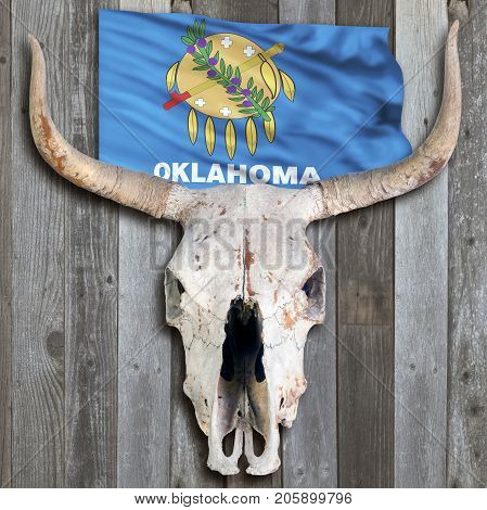 Old cow skull with a Oklahoma flag.