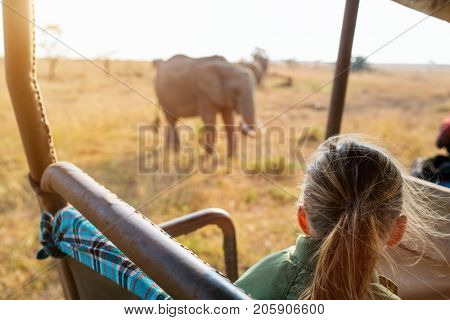Adorable little girl in Kenya safari on morning game drive in open vehicle