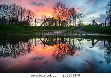 Sunset reflected in a pool of rainwater in east flanders, belgium