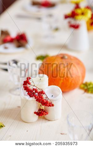 Red ripe ashberries on candles with pumpkin on served table on background