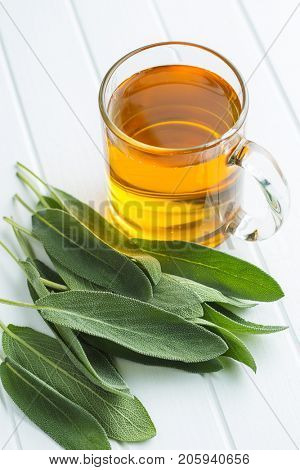 Sage tea and sage leaves. Infusion made from sage leaves. Medicinal  herb Salvia officinalis.