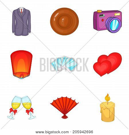 Jubilance icons set. Cartoon set of 9 jubilance vector icons for web isolated on white background