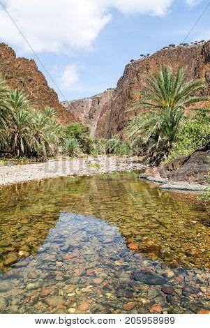 The Oasis Wadi Daerhu On The Island Of Socotra