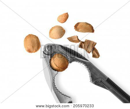 Nutcracker tool with apricot kernels on white background