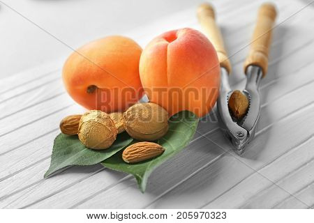 Nutcracker tool with apricots and kernels on table