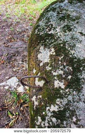 Piece of iron protruding from a concrete block covered with moss. In the background is grass and stone and leaves.