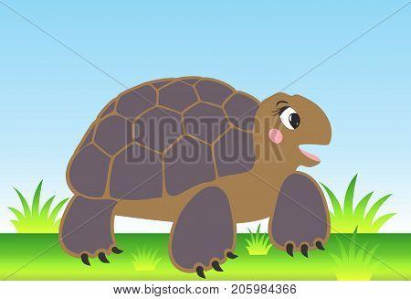 Vector cartoon turtle on the nice meadow
