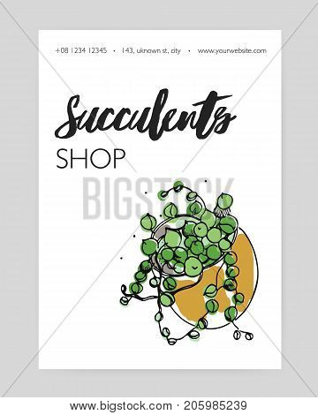 Flyer template with green succulent growing in pot hand drawn on white background. Decorative desert houseplant, indoor plant decoration. Vector illustration for floristry shop advertisement