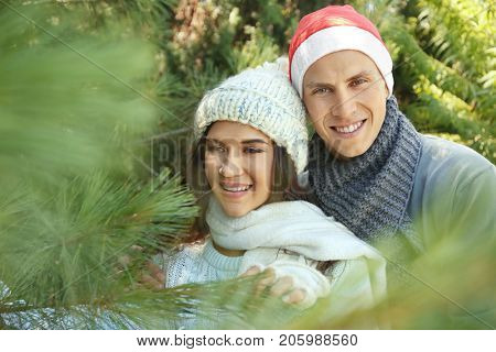 Young happy couple at Christmas tree market