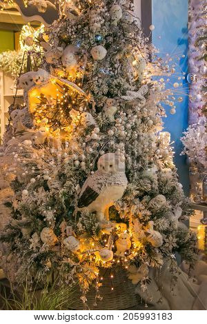 VETRALLA, ITALY - SEPTEMBER 23, 2017: Christmas tree with owls, lights and balls on the reign of Santa Claus shop
