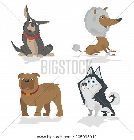 Cartoon dogs characters different breads doggy puppy illustration. Furry human friends cute animals