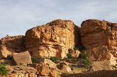 Rock formation with some foliage in Mali, West Africa poster
