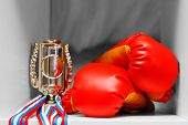 Gloves for boxing, the winner's cup, medals. Concept winner, trophy regiment. poster