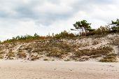 Baltic Sea Coast. Cold autumn morning on the beach. Soil erosion. Seashore poster