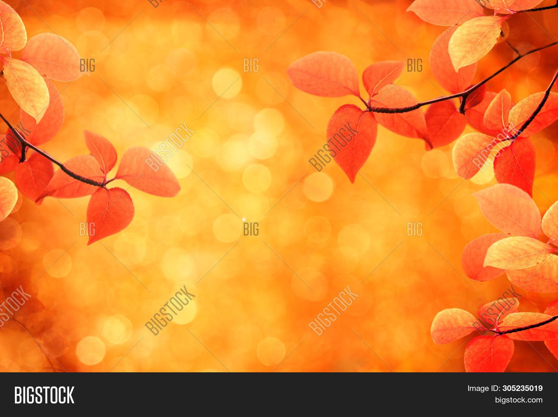 Autumn Background Image Photo Free Trial Bigstock