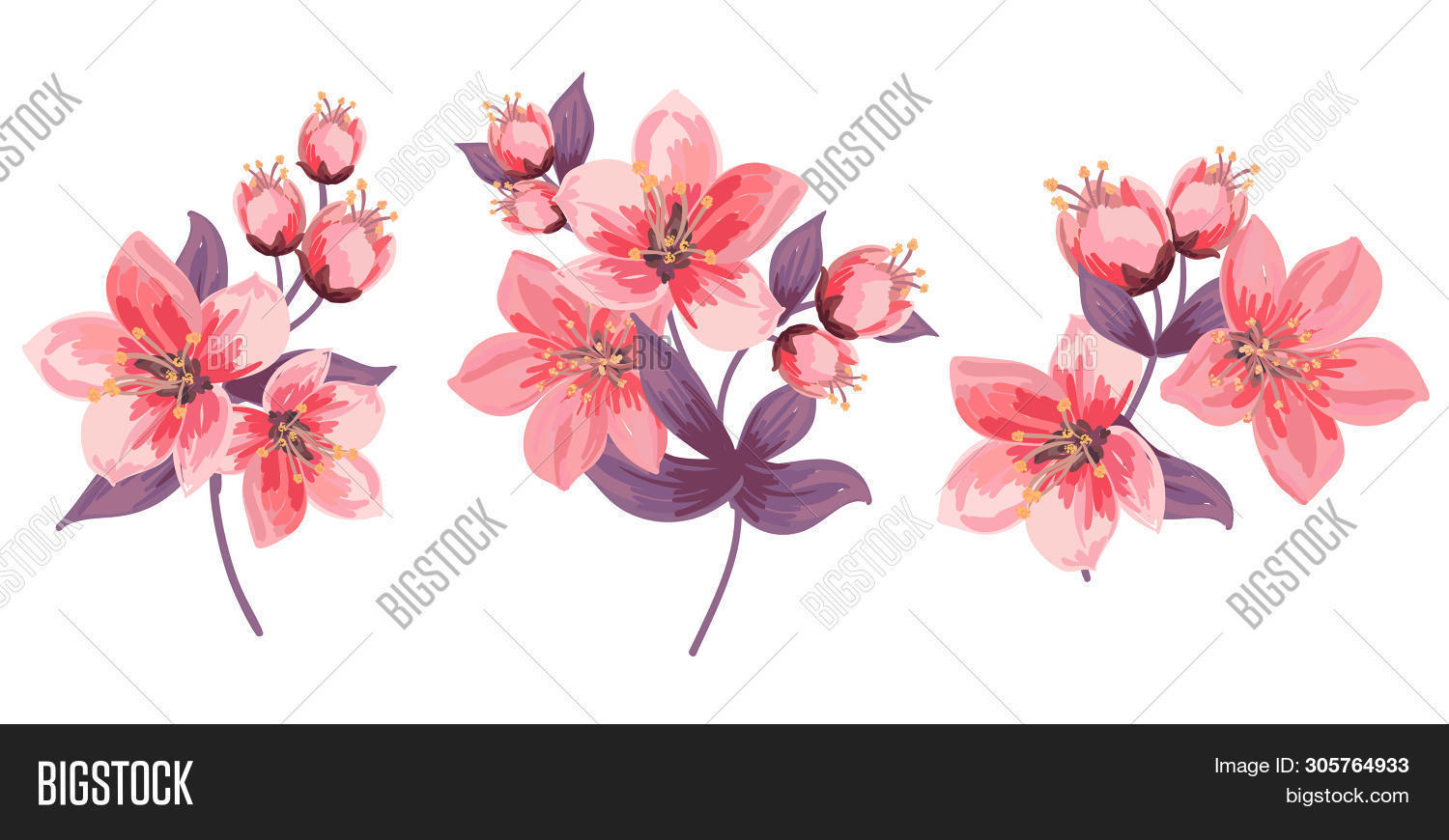 Set Floral Backgrounds Image Photo Free Trial Bigstock