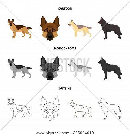 Vector Design Of Sheepdog And Sheltie Icon. Collection Of Sheepdog And Shepherd Vector Icon For Stoc