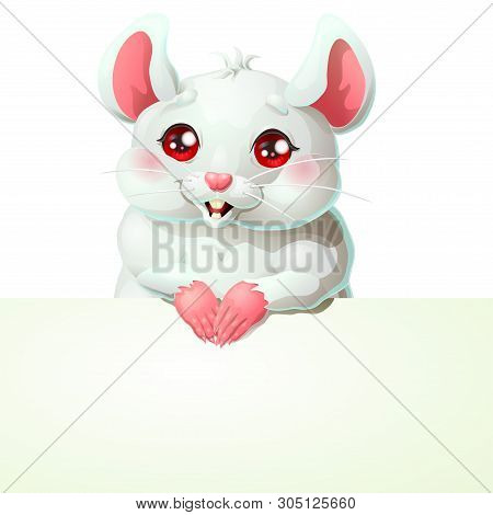 Cute White Mouse And Banner On White
