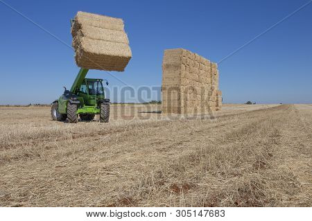 Telescopic handler gathering and stacking bales. Telescopic machinery for agricultural sector poster