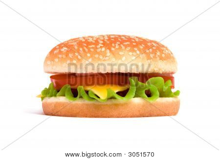Delicious Juicy Cheeseburger