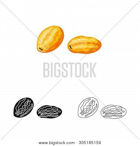 Vector Design Of Kumquat  And Citrus  Icon. Collection Of Kumquat  And Crop Stock Vector Illustratio