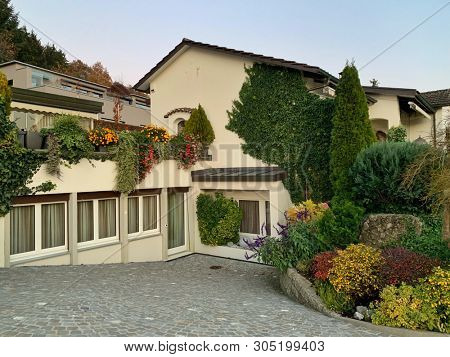 Flowering plants garden in front of a house