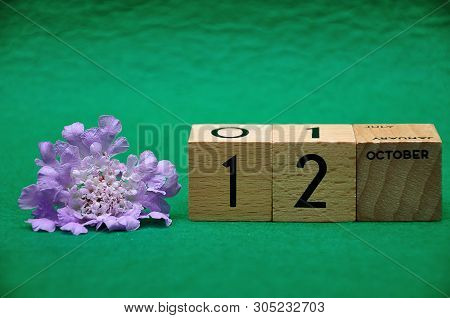 12 October On Wooden Blocks With A Purple Flower On A Green Background