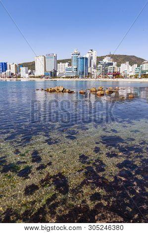 Busan, South Korea - April 2019: Cityscape View Of Coastal Area Of Busan At Gwangalli Beach, A Popul