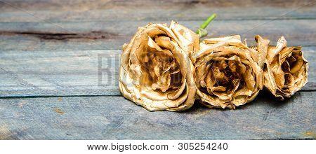Stylish Bouquet. Botany Concept. Beautiful Silver Rose. Floral Shop. Metallic Steel Color. Metal Flo