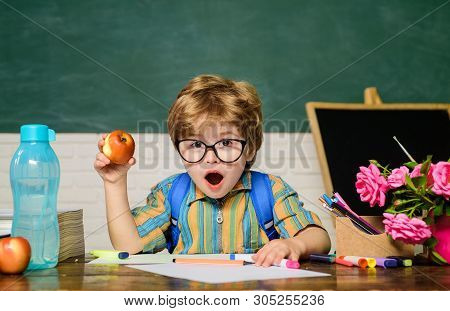 Back To School. Surprised Boy In Glasses. Homework. Lessons. School Subjects. Science. Education Con
