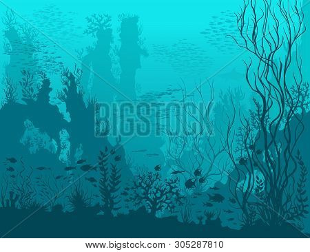 Underwater Landscape With Shark, Fishes, Coral Reefs, Huge Rocks And See Weeds. Blue Tropical Unders