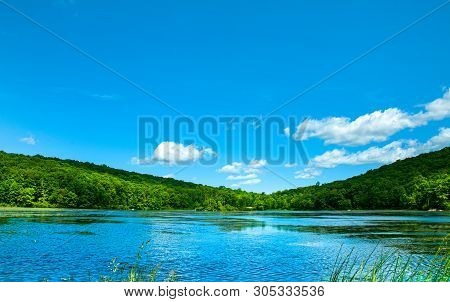 Landscape Lake. Beautiful Wild Nature, Forest. Lake With Mirror Reflections On Sunny Day. Summer Lak