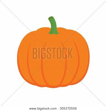 Orange Pumpkin Vector Illustration. Autumn Halloween Pumpkin, Vegetable Graphic Icon Or Print