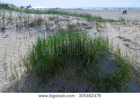 Grass Covered Dunes On The Beautiful White Sand Beach Of The Northern Sea In Sankt Peter-ording