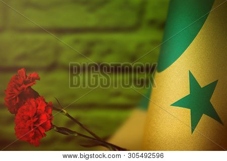 Senegal flag with two red carnation flowers for honour of veterans or memorial day on green blurred painted brick wall mockup. Senegal glory to the heroes of war concept. poster
