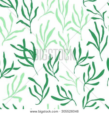 Estragon Or Tarragon Seamless Pattern Therapeutic Green Leaf Branch. Isolated Rosemary Vector Illust