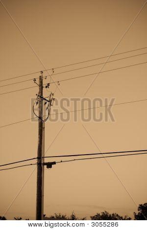 Sepia Toned Telephone / Electirc Pole
