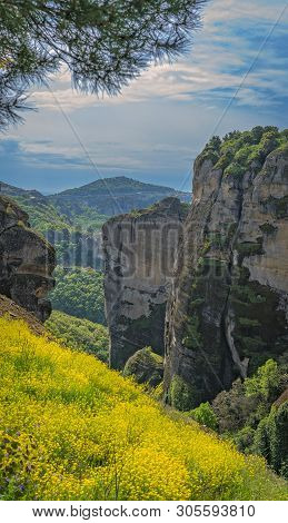 Meadow Of Yellow Flowers Among The Rocky Landscape At Meteora, Trikala Region, Greece