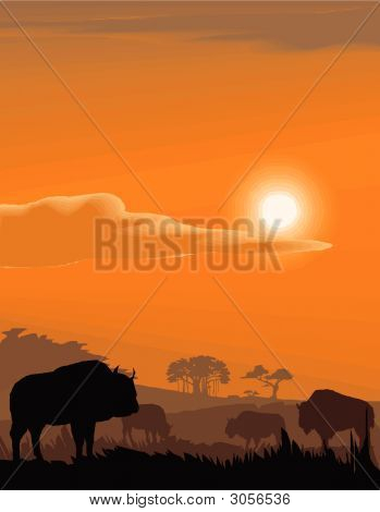 Vector evening landscape illustration with wild animals poster
