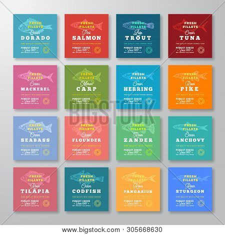 Fresh Fillets Premium Quality Labels Big Set. Abstract Vector Fish Packaging Design Layout. Retro Ty