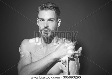Sexy Naked Macho Taking Shower With Soap Sponge. Man Washing Torso. Muscular Bearded Man Washes In S
