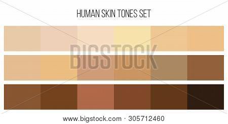Creative Illustration Of Human Skin Tone Color Palette Set Isolated On Background. Art Design. Abstr