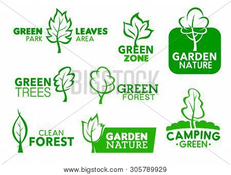 Green Leaf And Tree Icons, Company Corporate Identity Symbols. Vector Green Park Area, Garden Zone A