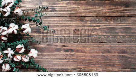 Autumn Background Of Cotton Flowers And Eucalyptus Branches Over A  Wooden Texture Backdrop. Image S